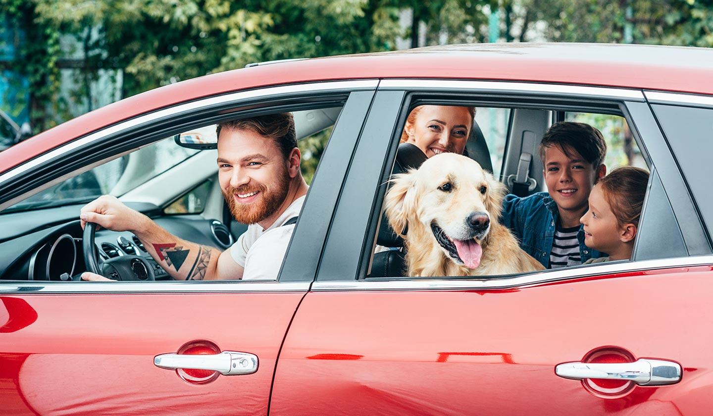 Seguro Auto Allianz