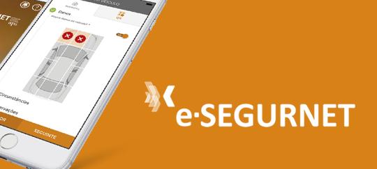 e-segurnet_desktop